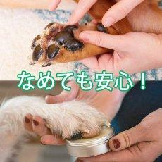 画像4: ハナ&パッドケアー 30g えぞ鹿油100%!舐めても良い、食べても良いハナ&パッドつるつるに!  (4)