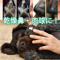 画像3: ハナ&パッドケアー 30g えぞ鹿油100%!舐めても良い、食べても良いハナ&パッドつるつるに!  (3)
